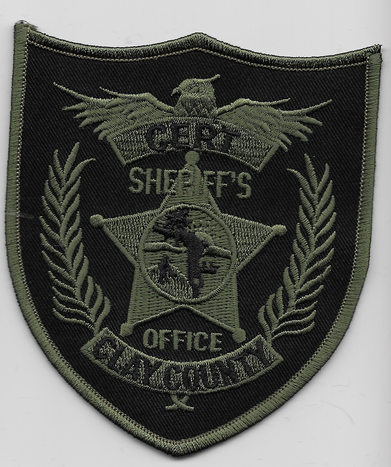 Clay County Sheriff FL SWAT CRT
